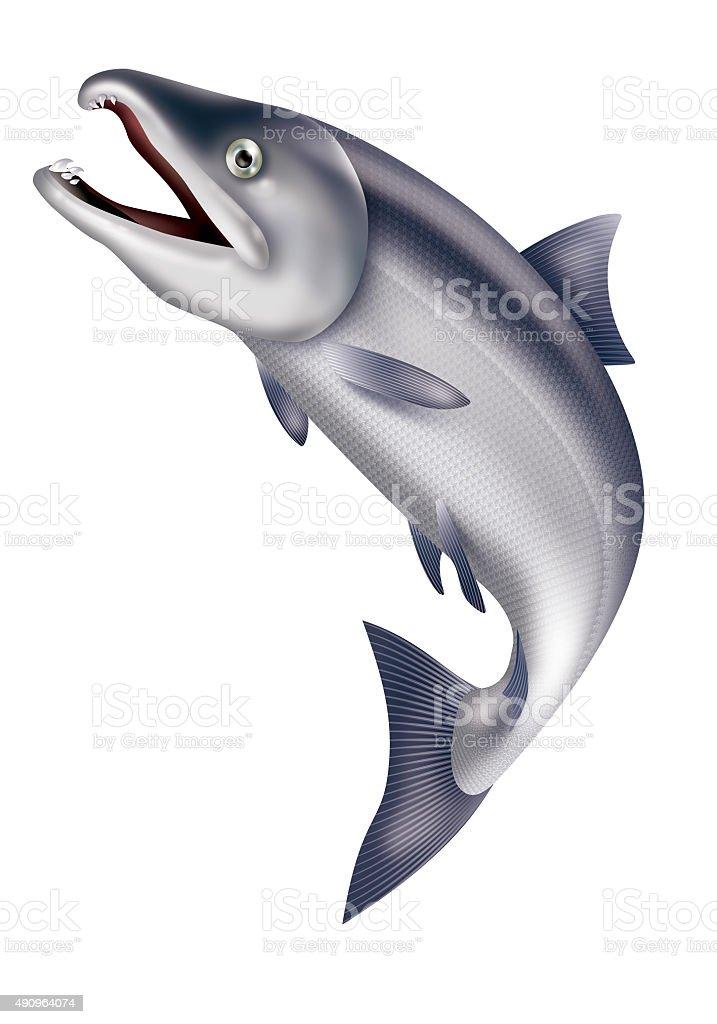 Illustration of jumping salmon. vector art illustration