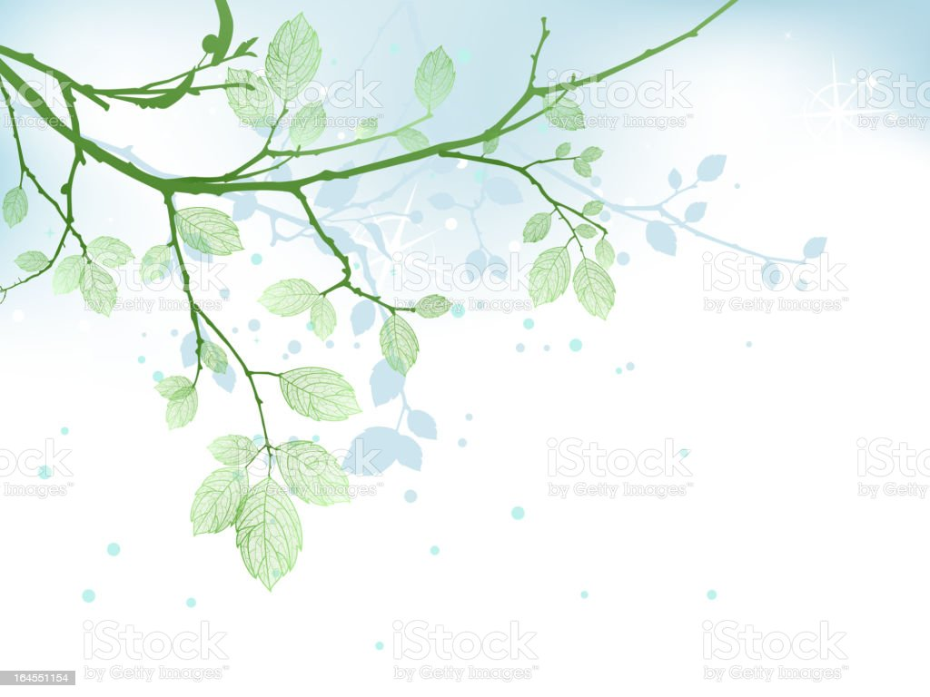 Illustration of leafy branch and shadow royalty-free stock vector art