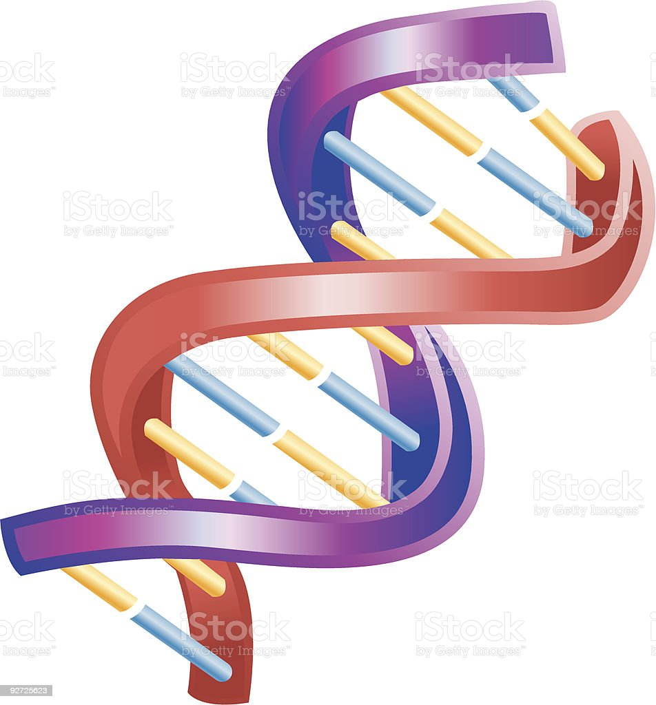 Illustration of Shiny DNA Double Helix royalty-free stock vector art