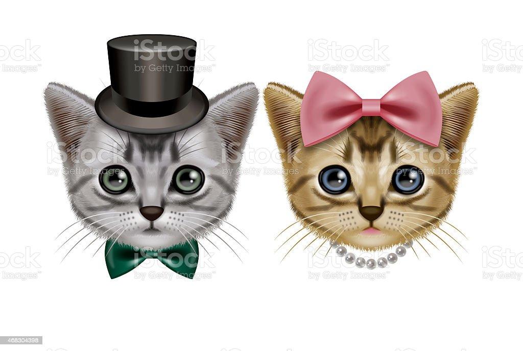 Illustration of two short hair cats. vector art illustration