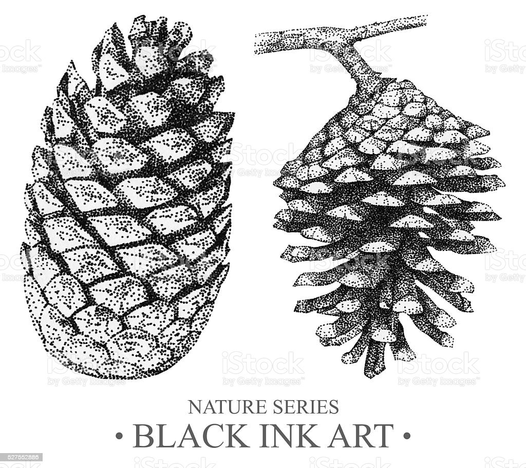 Illustration with cones drawn by hand with black ink vector art illustration