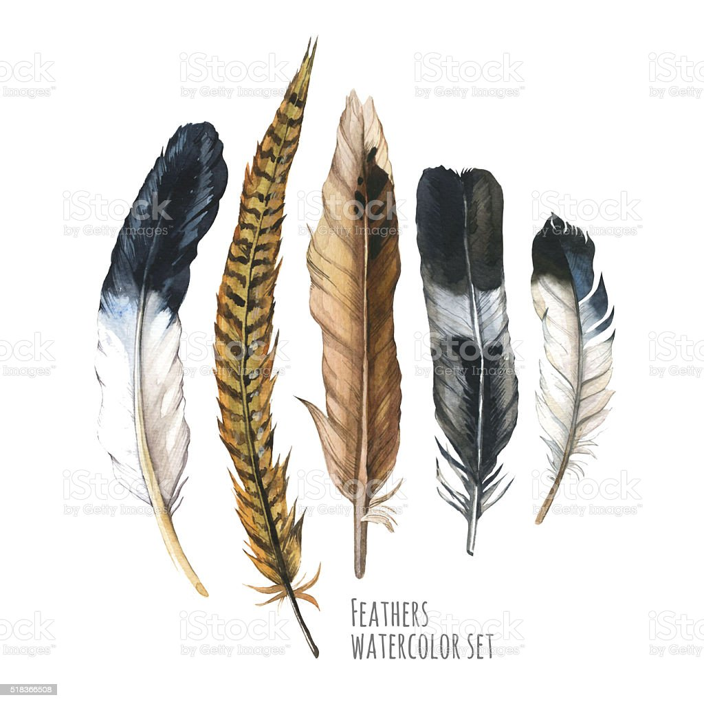 Illustration with different sketch feathers. Boho style. stock photo