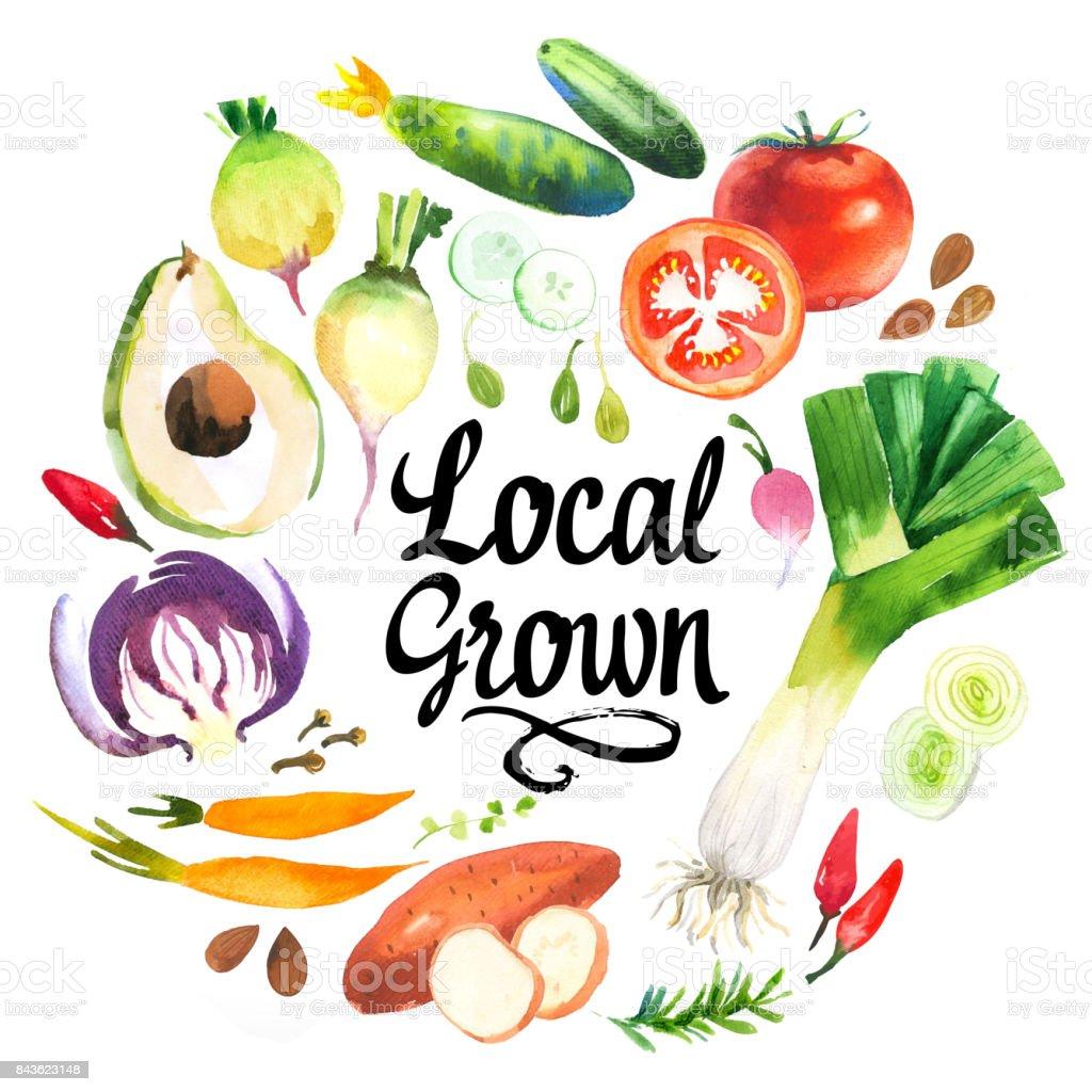 Illustration with watercolor food. Farmer's market vector art illustration