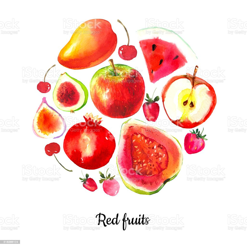 Illustration with watercolor food. Red sketch set of fruits. vector art illustration