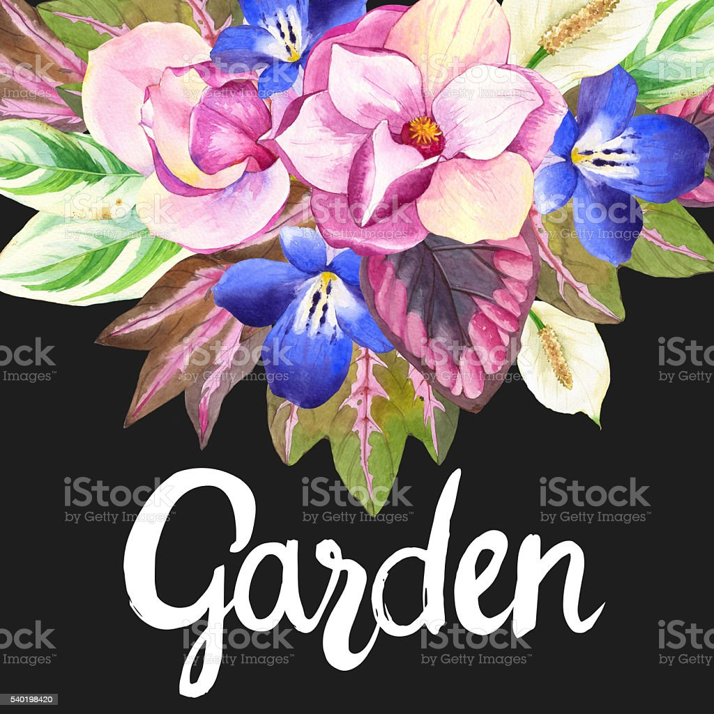 Illustrations with realistic watercolor flowers. Botanical illustration. vector art illustration