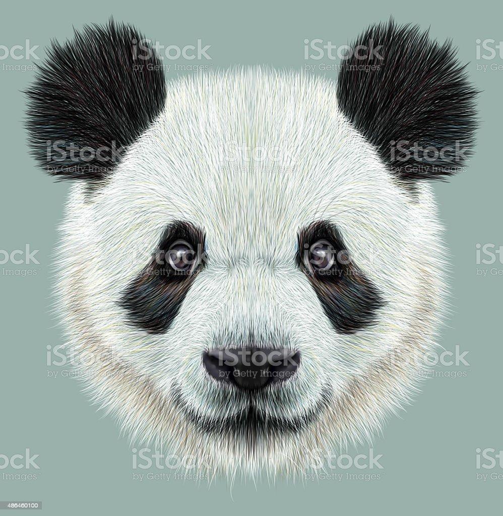 Illustrative portrait of Panda vector art illustration