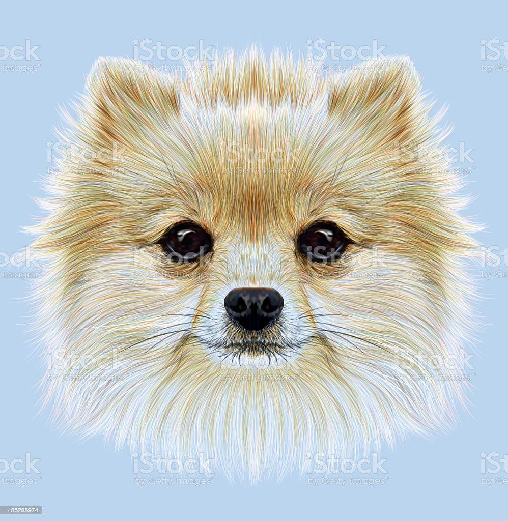 Illustrative Portrait of Pom Pom vector art illustration
