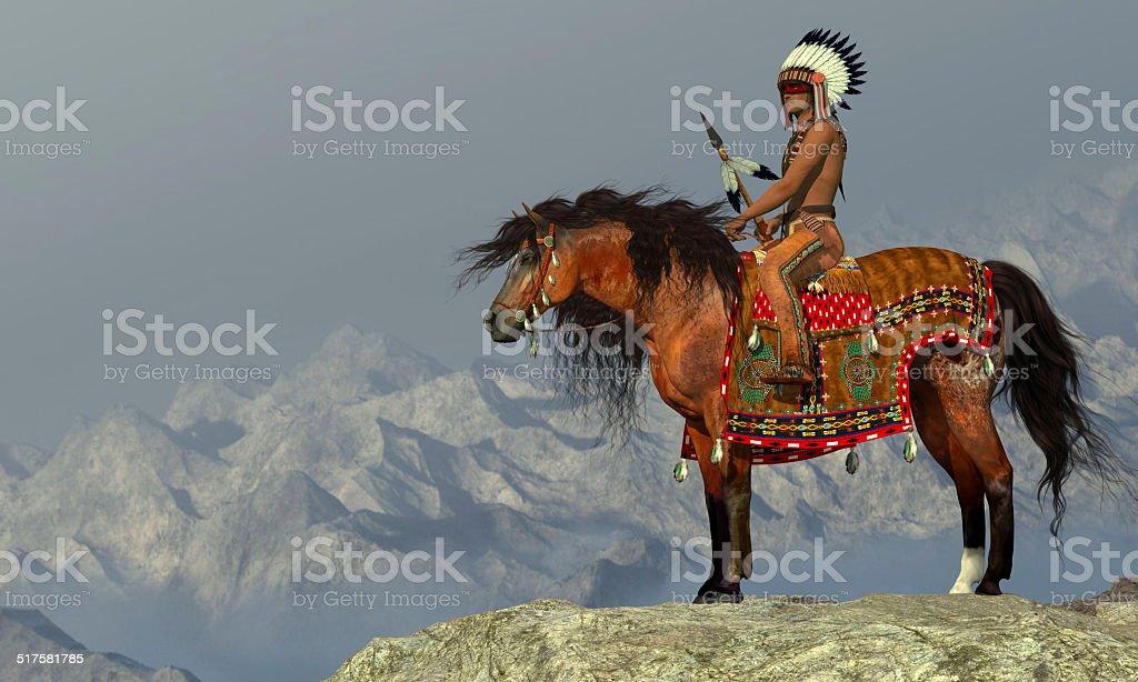 Indian Proud Eagle vector art illustration