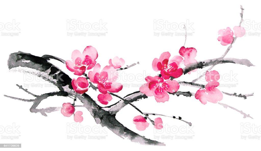 Ink illustration of sakura. Sumi-e style. stock photo