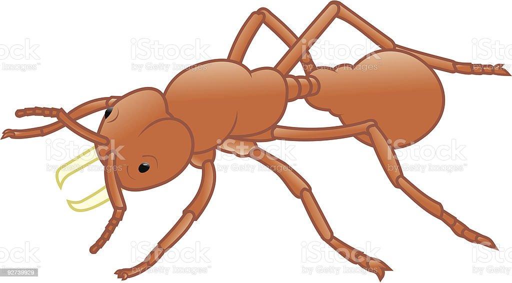 Insecto-ant - ilustración de arte vectorial