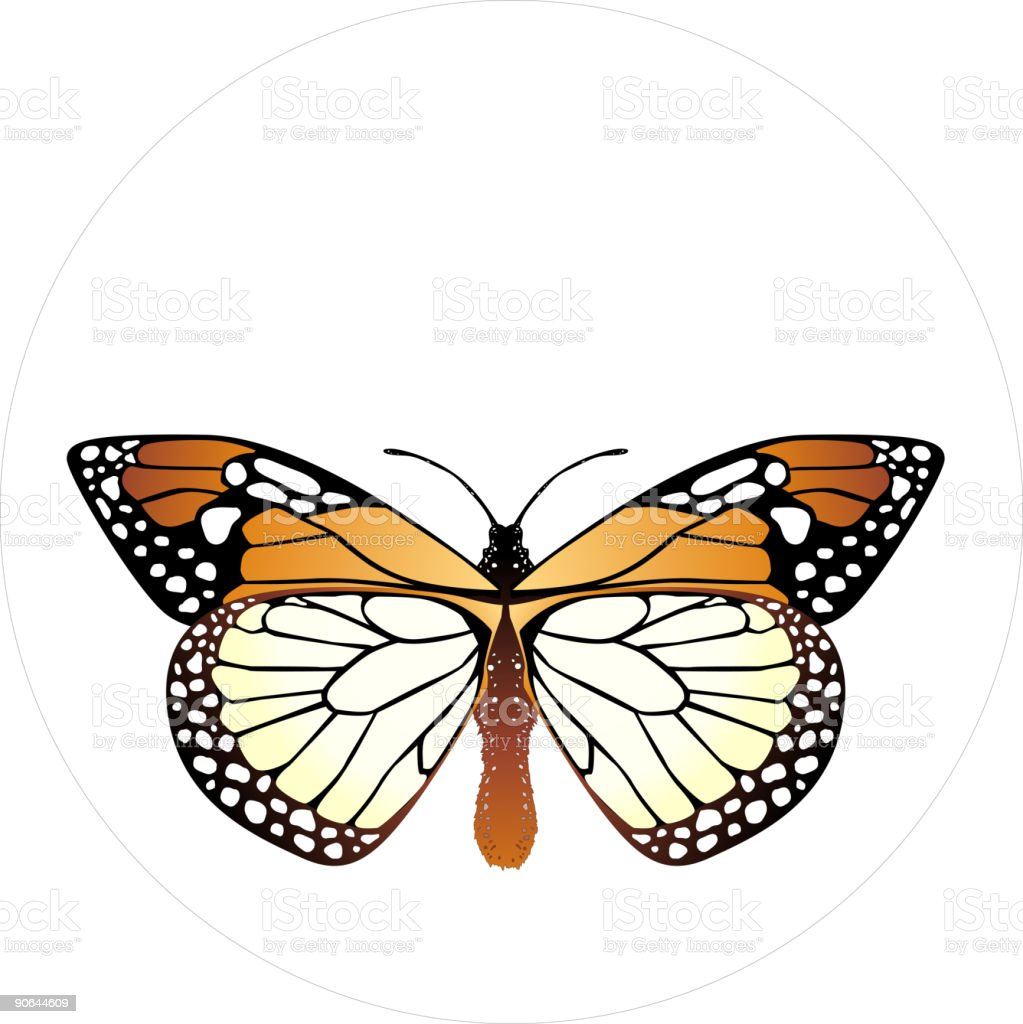Insect Design 07 royalty-free stock vector art