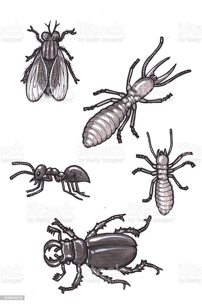 Insekten 3 (Comic Lizenzfreies vektor illustration