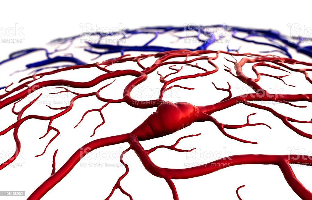 insult, brain vector art illustration