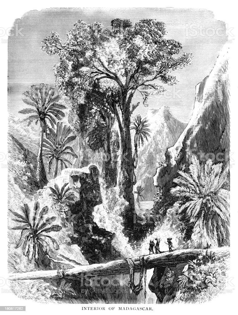 Interior of Madagascar vector art illustration