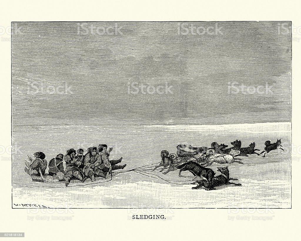 Inuit sledging, 19th Century vector art illustration