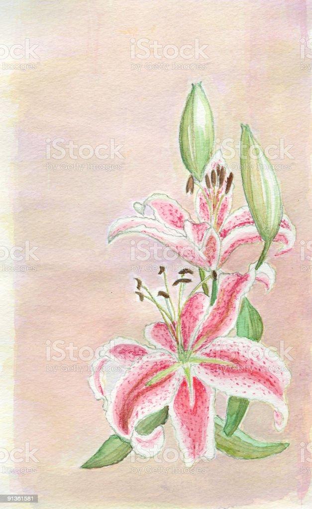 Japanische Lilie Zeichnung Lizenzfreies vektor illustration