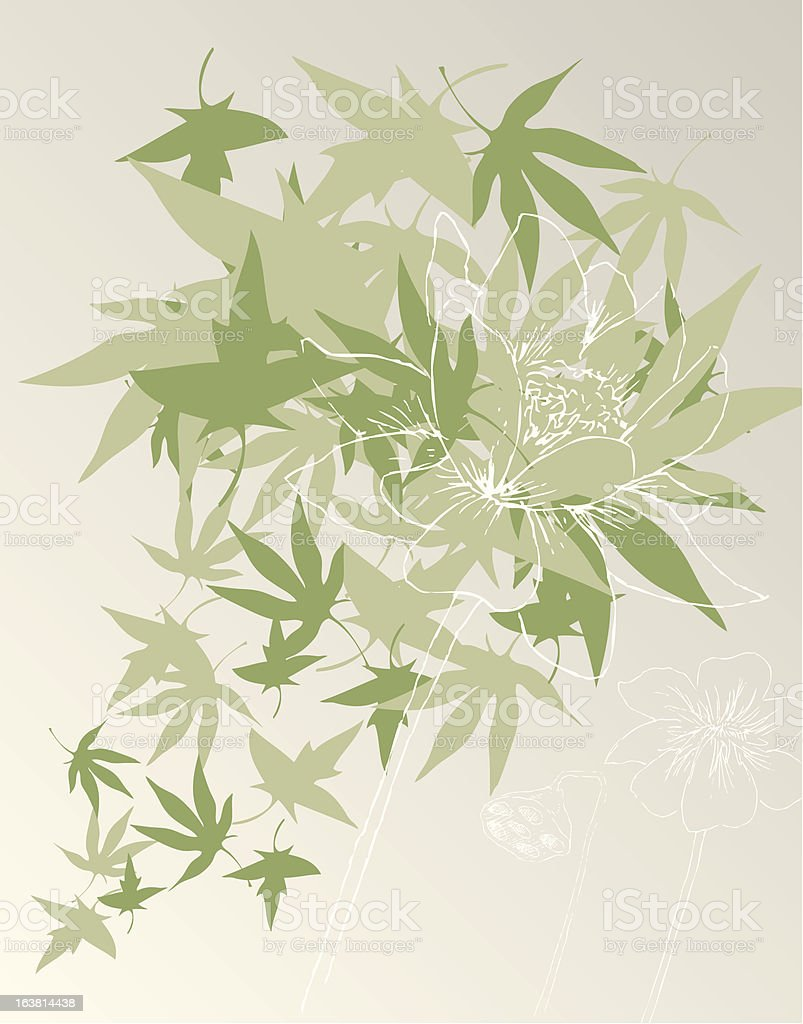 Japanese Maple royalty-free stock vector art
