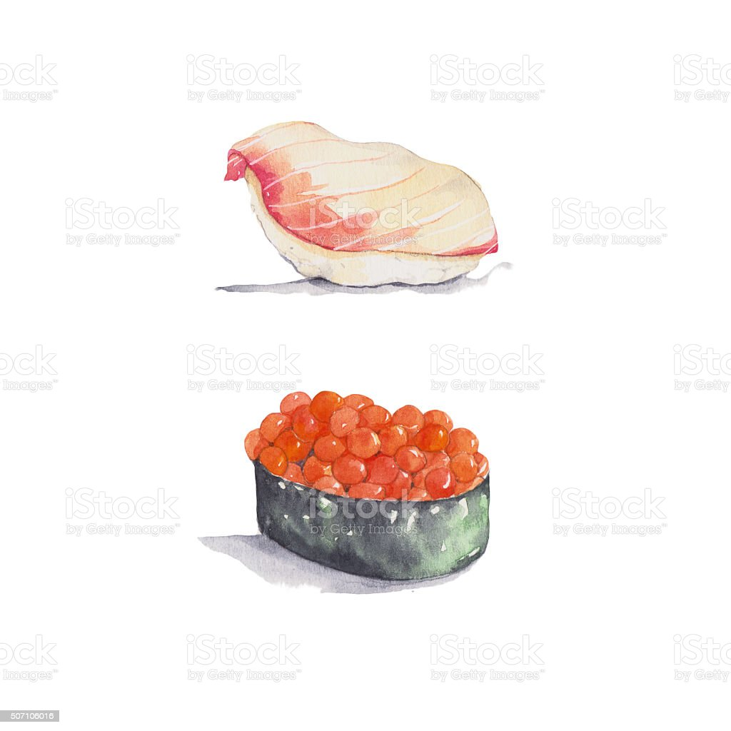 Japanese sushi vector art illustration