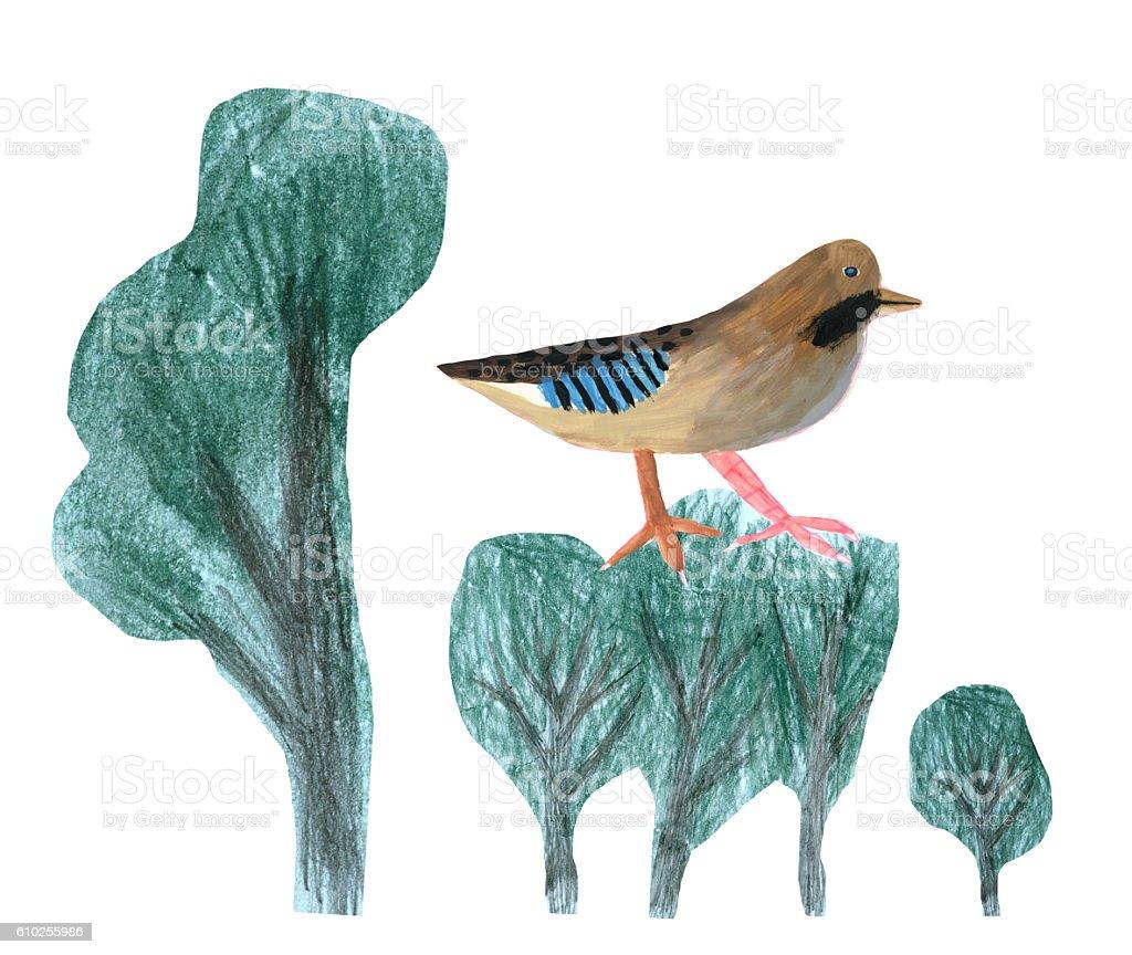 Jay bird vector art illustration