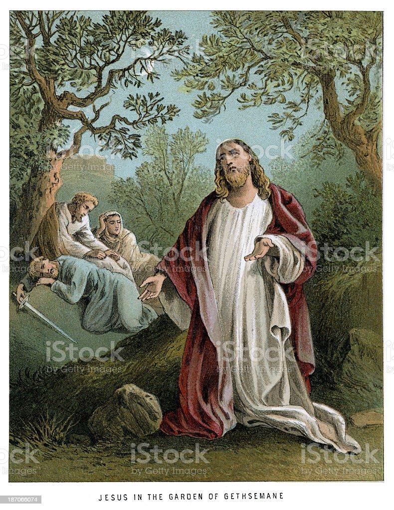 Jesus in the Garden of Gethsemane royalty-free stock vector art
