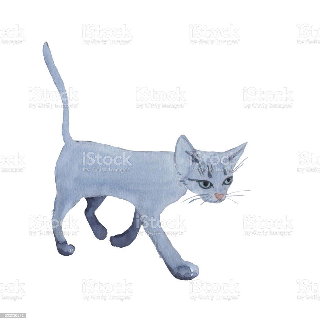 Kitten vector art illustration
