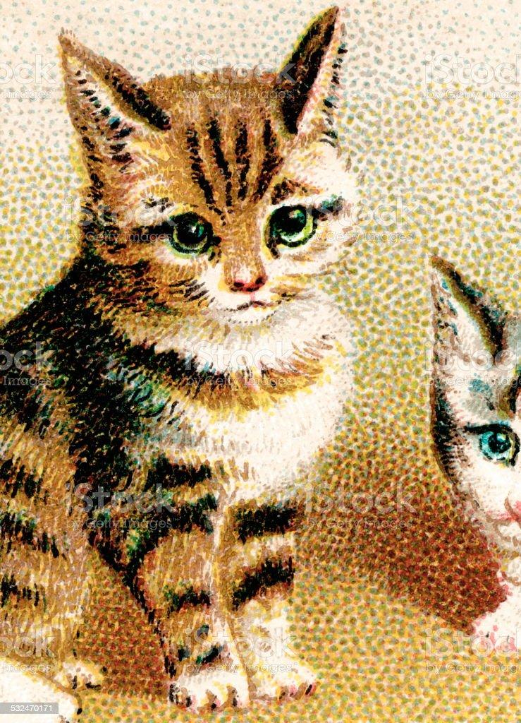 Kitty vector art illustration