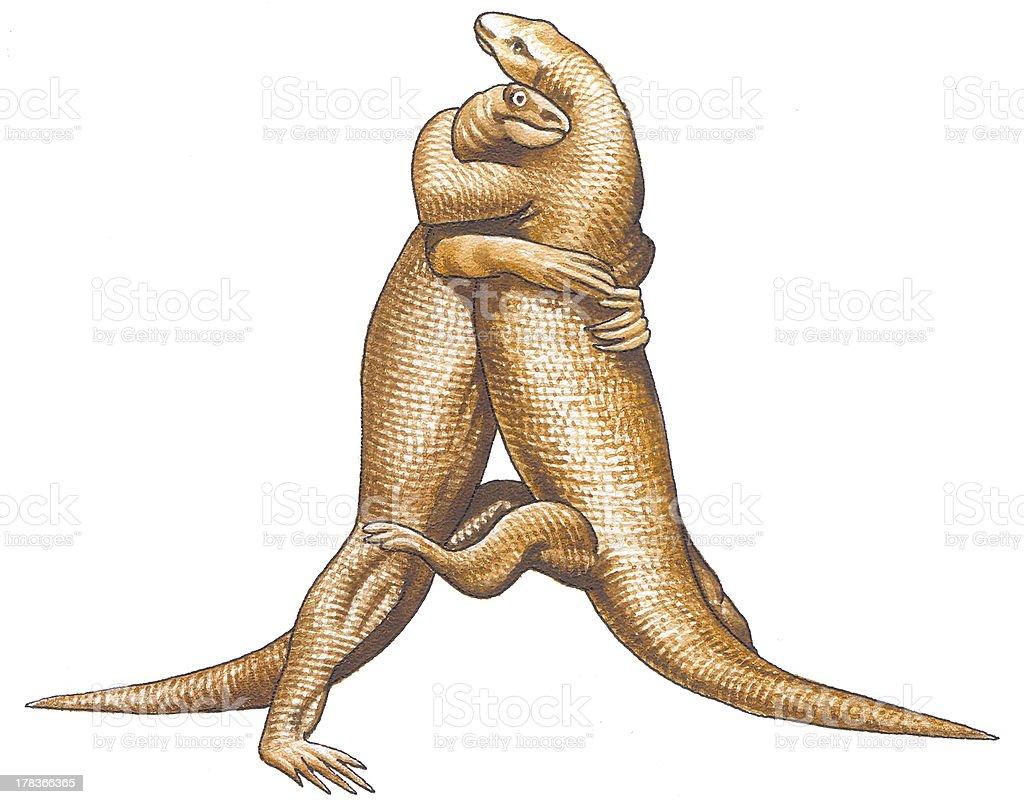 Komodo dragons vector art illustration