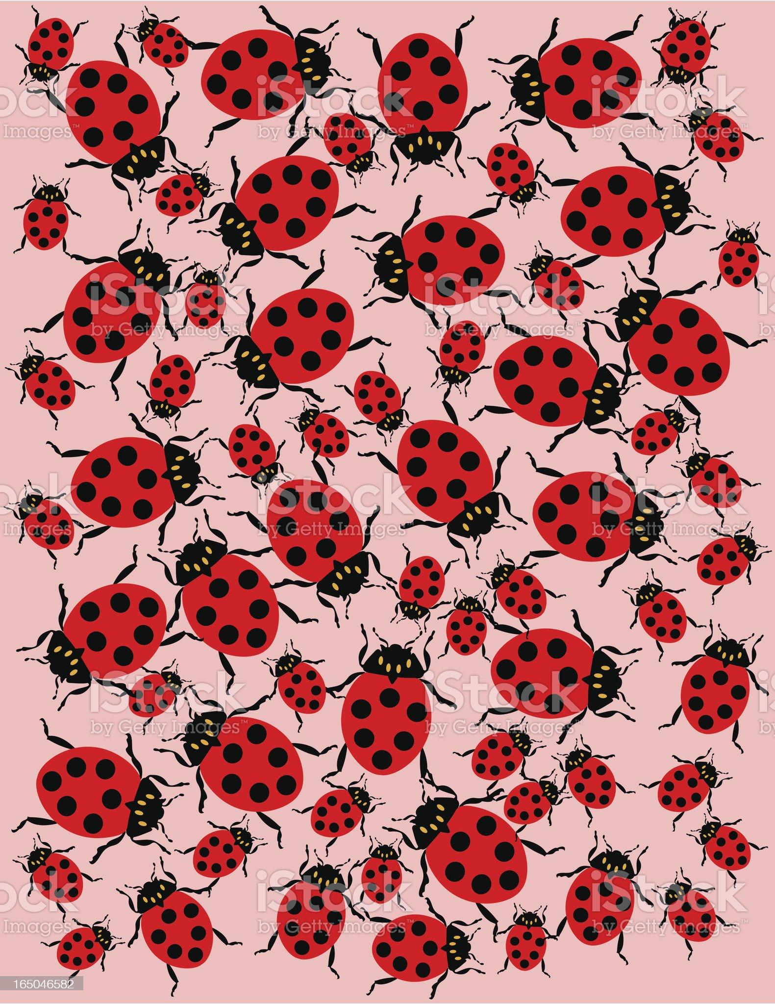 Ladybug frame royalty-free stock vector art