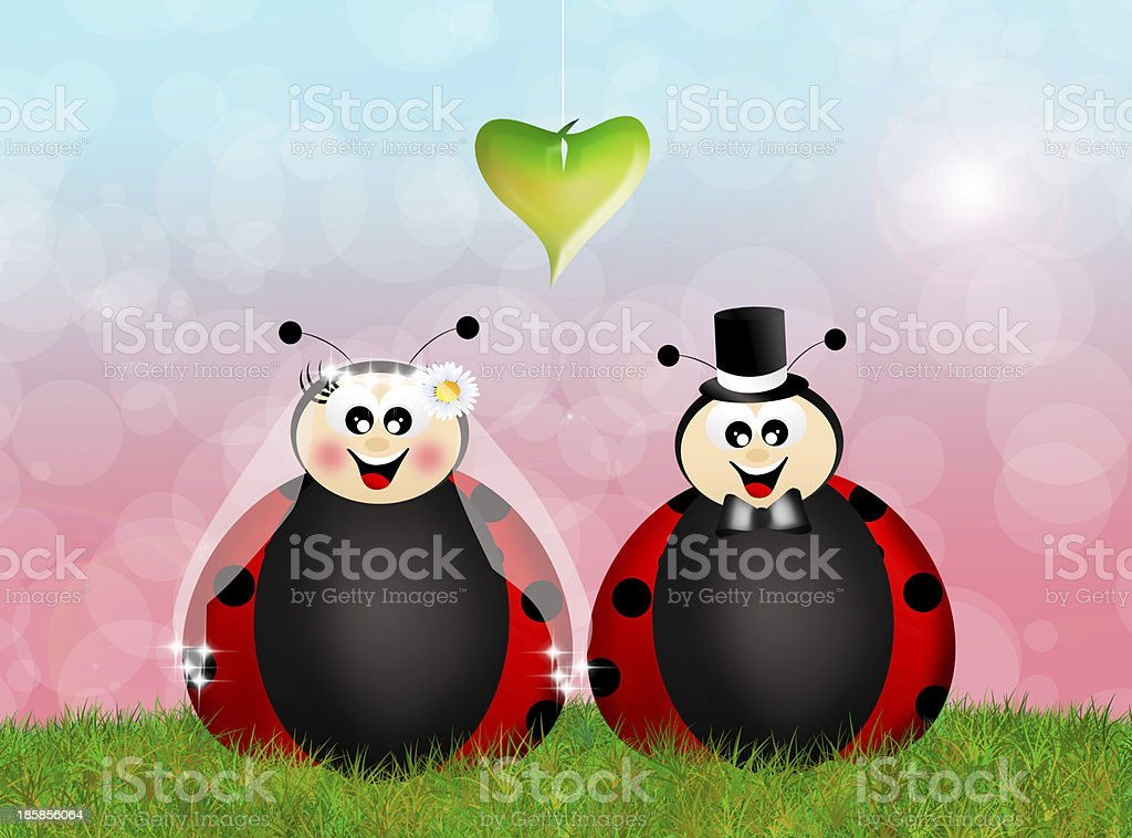 Ladybugs in love royalty-free stock vector art