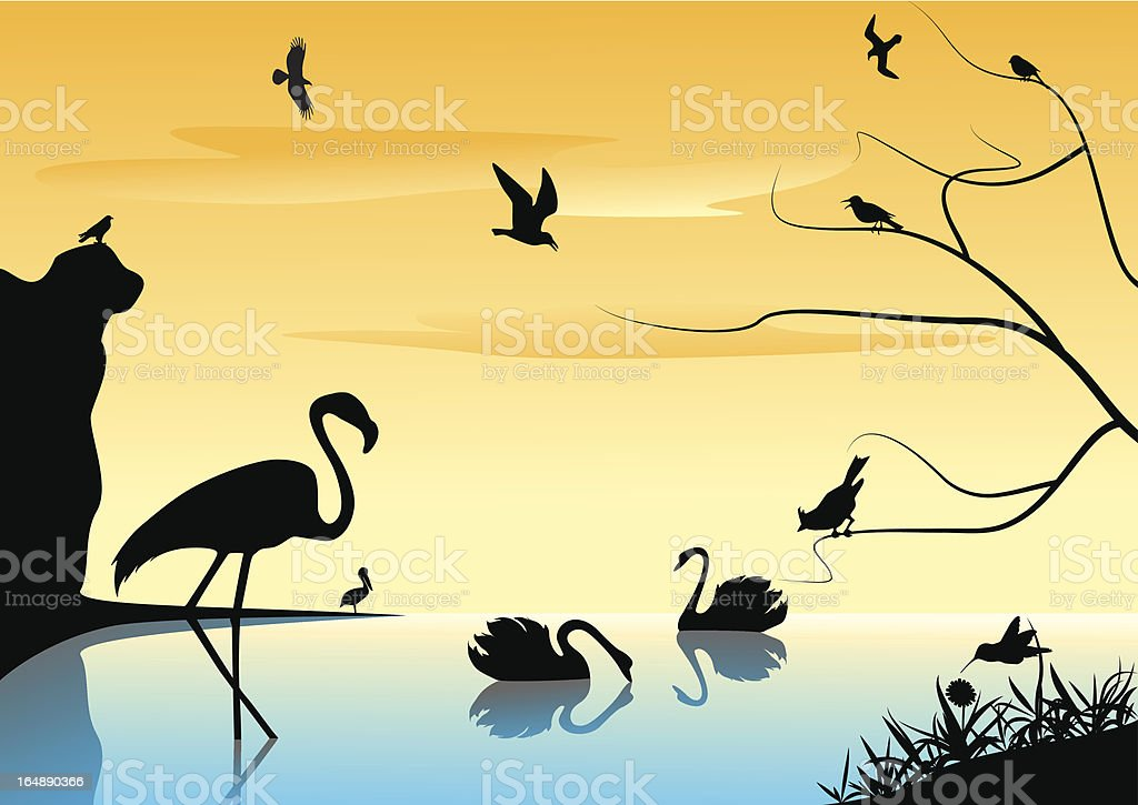 Landscape with birds. royalty-free stock vector art