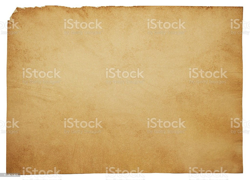 Large Isolated Blank Old Aged Parchment Papyrus Grunge Paper Texture royalty-free stock vector art