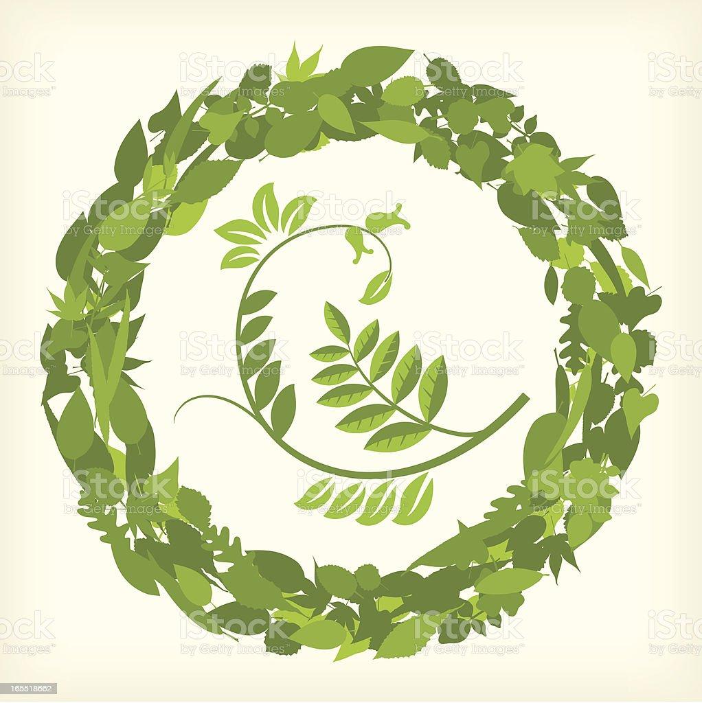 Leaf circle (vector) royalty-free stock vector art