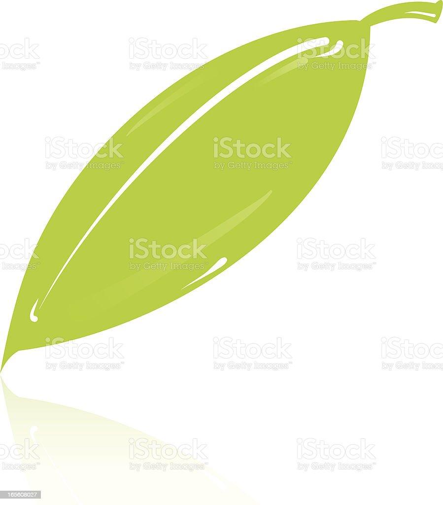 Leaf royalty-free stock vector art