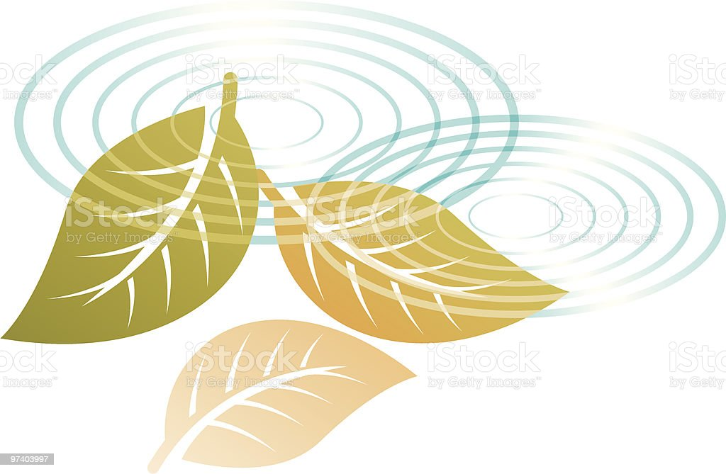 Leaf reflection royalty-free stock vector art