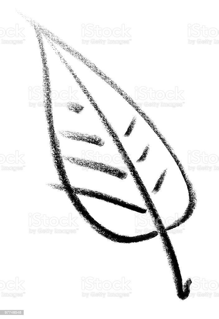 leaf sketch royalty-free stock vector art