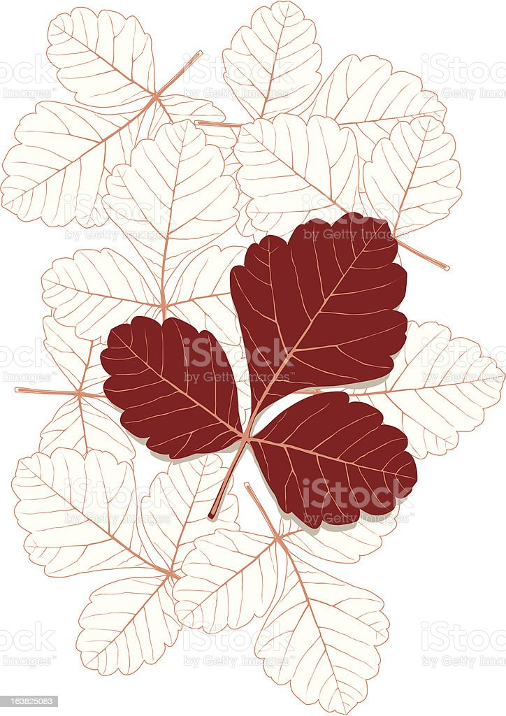 leaf2 royalty-free stock vector art