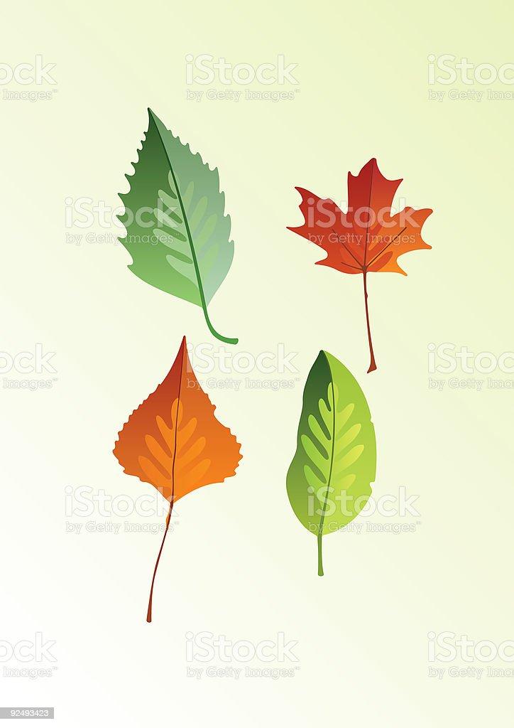 leaves illustration royalty-free stock vector art