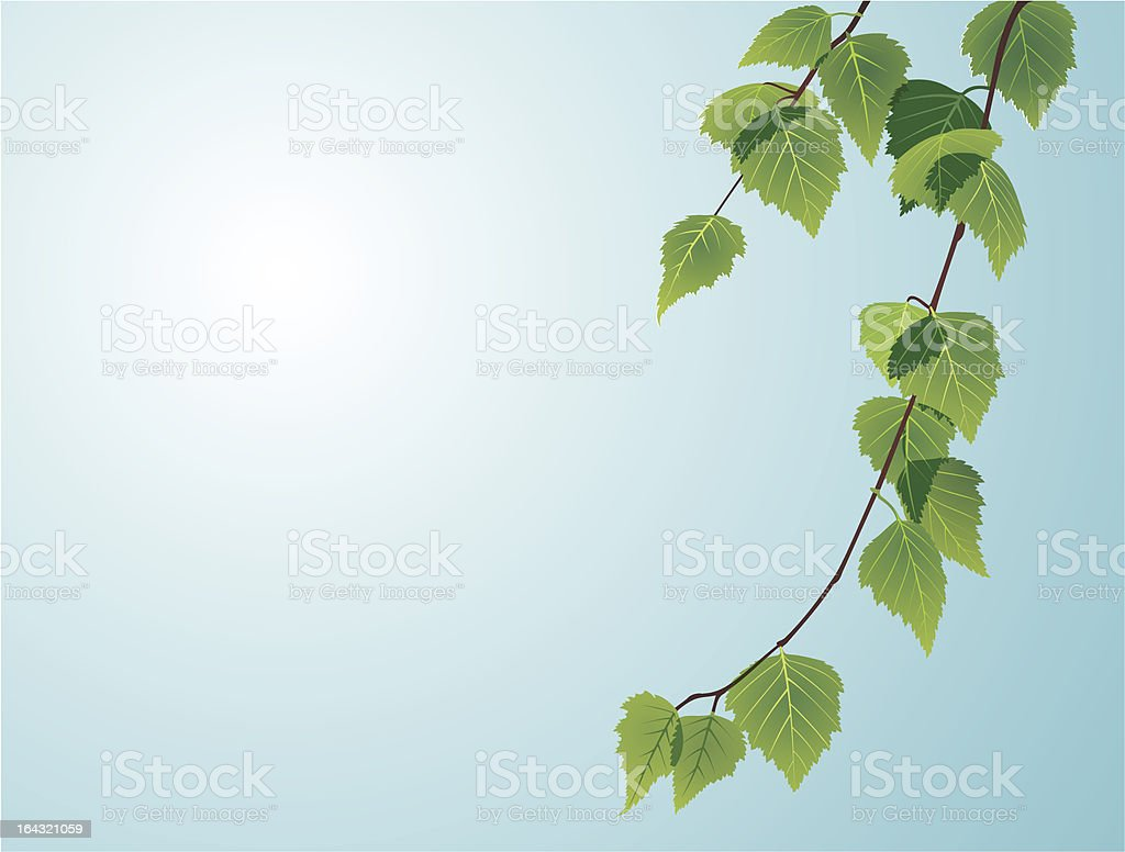 leaves on sky royalty-free stock vector art