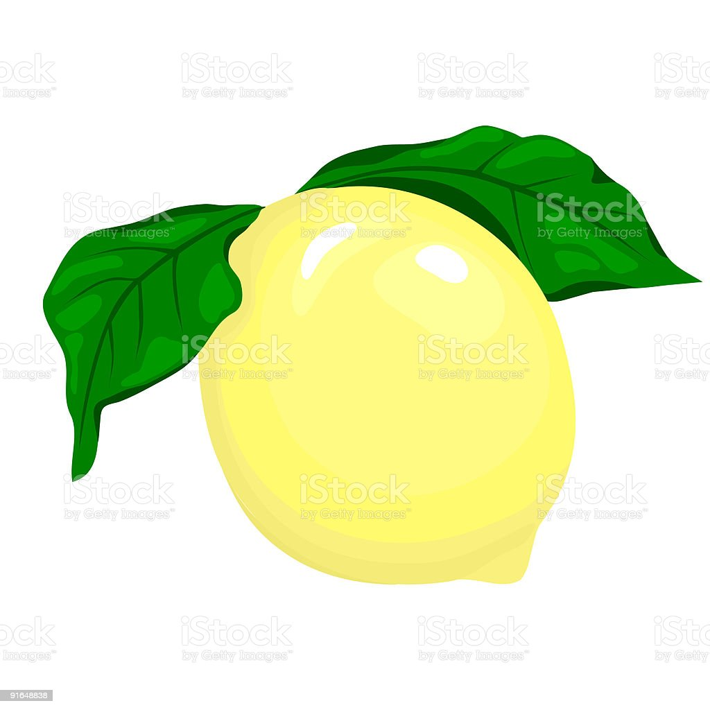Lemon royalty-free stock vector art