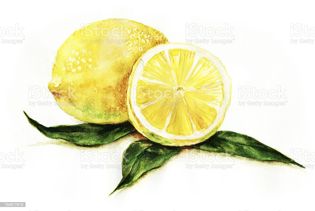 Lemons vector art illustration