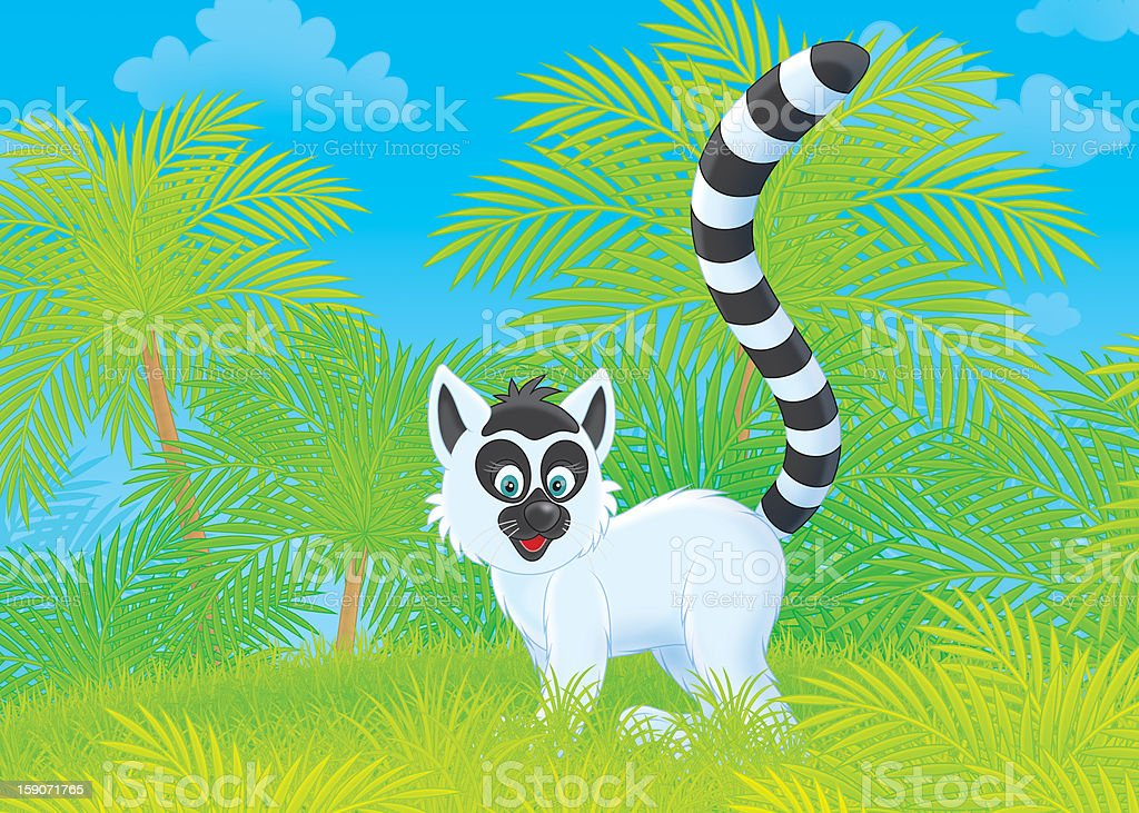 Lemur vector art illustration