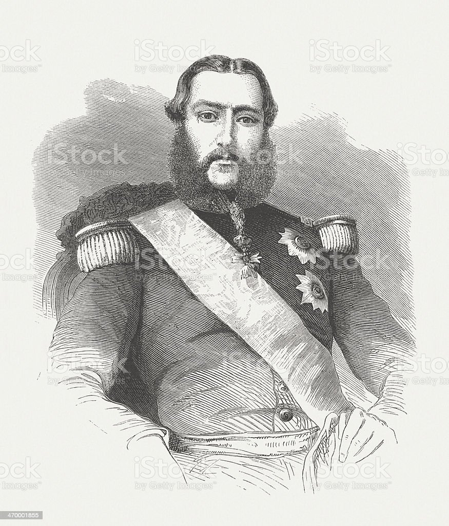 Leopold II of Belgium (1835-1909), wood engraving, published in 1875 royalty-free stock vector art