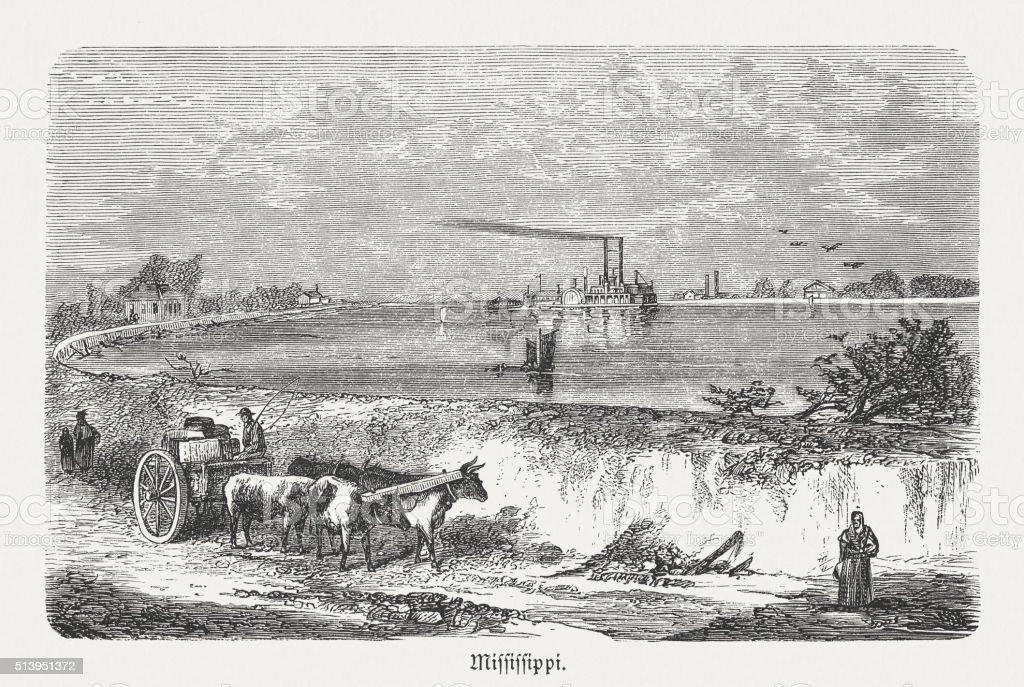 Levees on the Mississippi River, wood engraving, published in 1880 vector art illustration