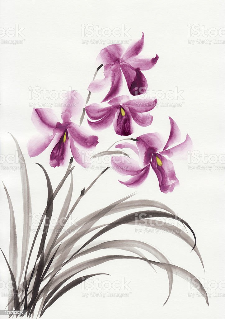 Lilac orchids royalty-free stock vector art