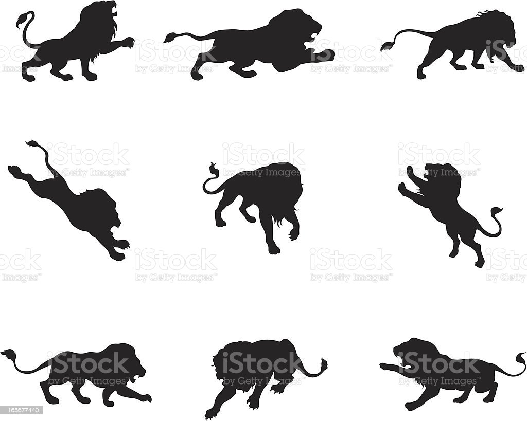 Lion in different actions royalty-free stock vector art