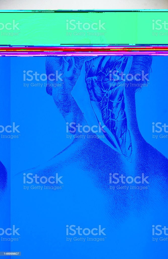 Lithograph Illustration of a Human Head from the Back royalty-free stock vector art