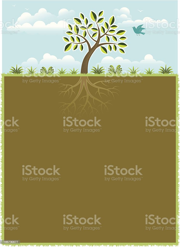 Little tree and root poster vector art illustration