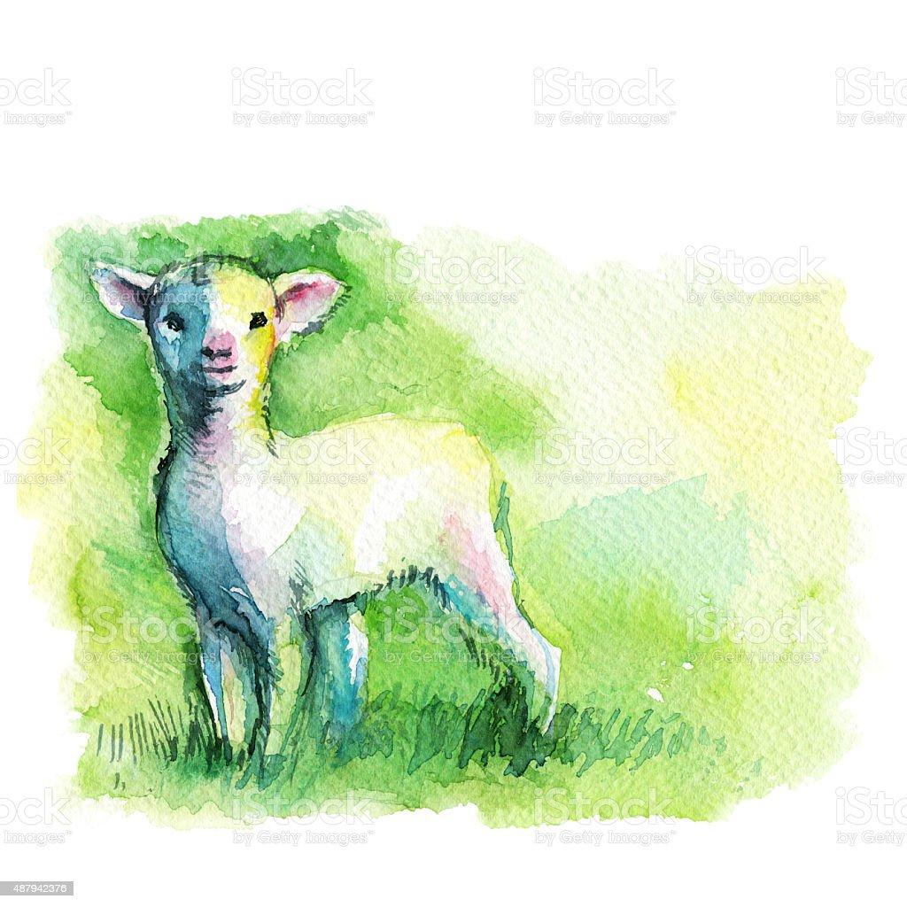 little white lamb on a green background vector art illustration
