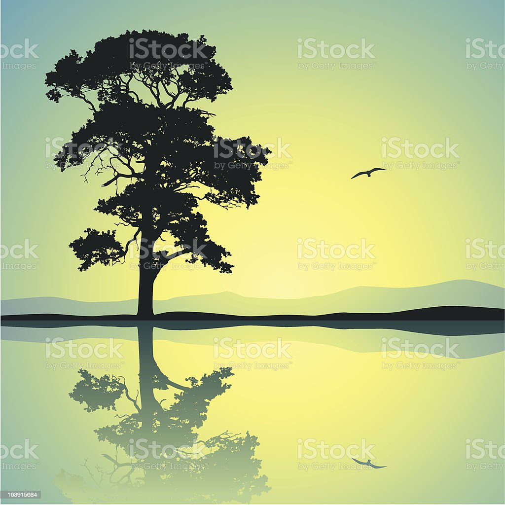 Lone Tree vector art illustration