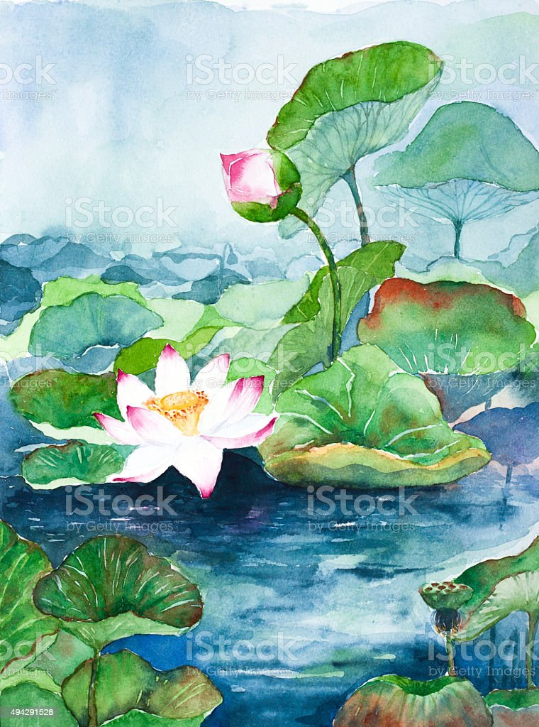 lotus flower watercolor painted vector art illustration